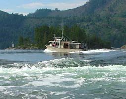 Skookumchuck Narrows Boat Tours