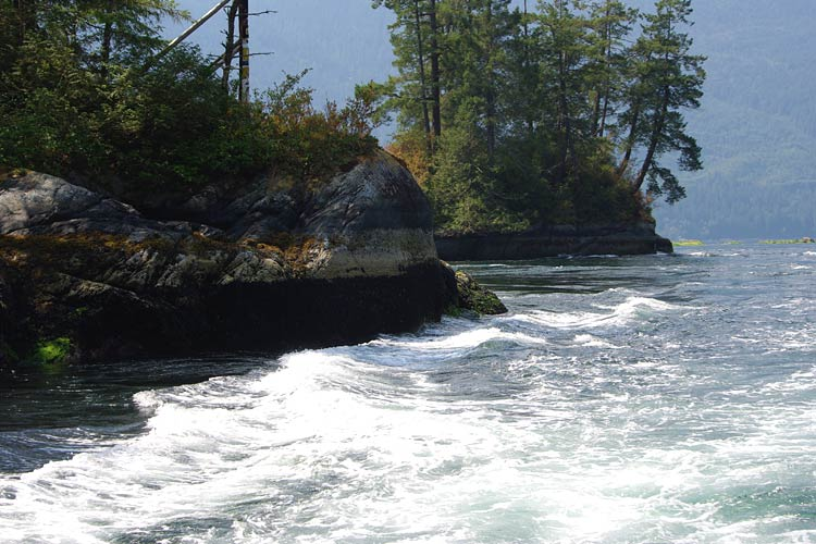 Princess Louisa Inlet Tours